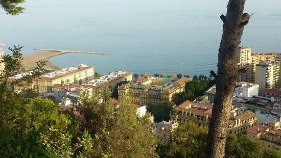 AC Hotel Malaga Palacio : Vista del puerto
