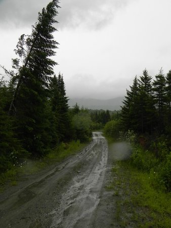 Northwoods Outfitters - Day Tours: Heavy wind and rain in Greenville