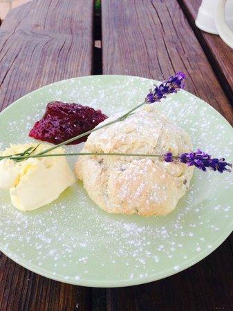 New Forest Lavender Farm: Cream tea - Lavender Scone