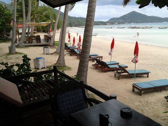 Palm Leaf Resort: vista dalla veranda