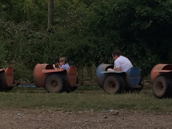 Mabie Farm Park: Choo choo! Mabie Park Farm express!!! Watch out its messy :)