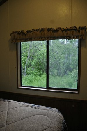 Gwin's Lodge and Restaurant: View out the back bedroom window
