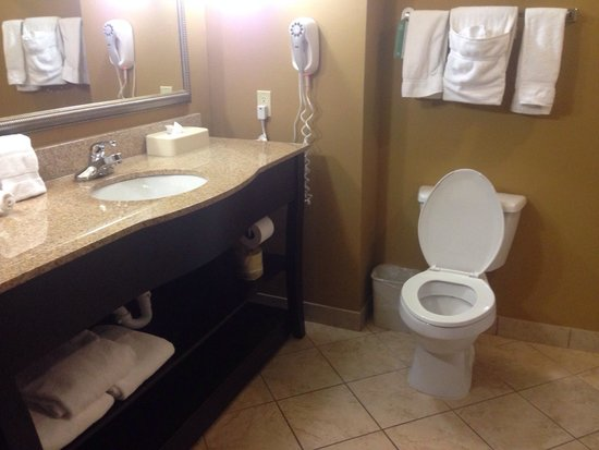 Holiday Inn Express Hotel & Suites Foley : Very nice bathroom.