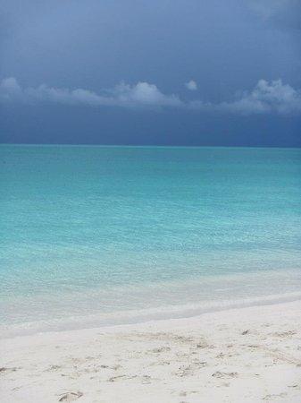Ocean Club West : Grace Bay