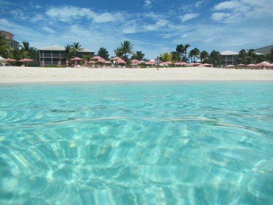 Ocean Club West : Beachfront