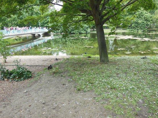 Parque de St. James: Beautiful Park,