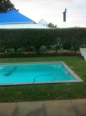 Sixteen Guesthouse on Main: Pool