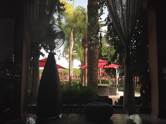 Sofitel Marrakech Palais Imperial : somewhere to keep cool!