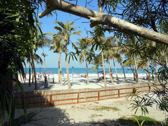 Playa y Parque Jumeira: пляж