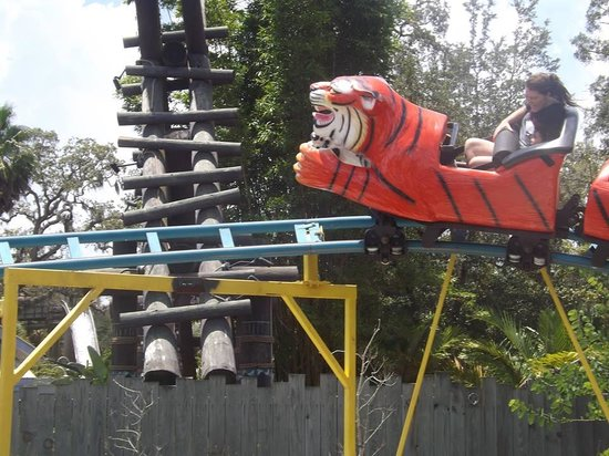 Tampa's Lowry Park Zoo: My daughter and I riding one of the coasters!