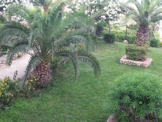 Mellieha Bay Hotel : The gardens