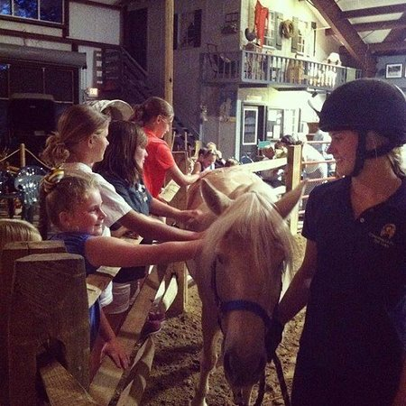 Chincoteague Pony Centre : Sofia meeting Teager led by Lizzy