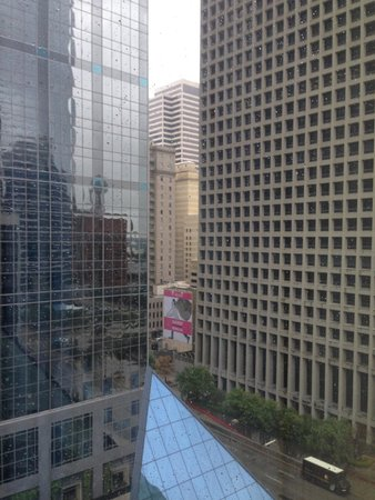 Homewood Suites by Hilton Dallas Downtown: East View