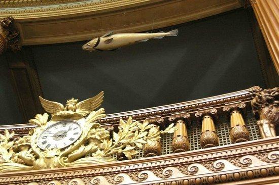 Massachusetts State House : The Sacred Cod