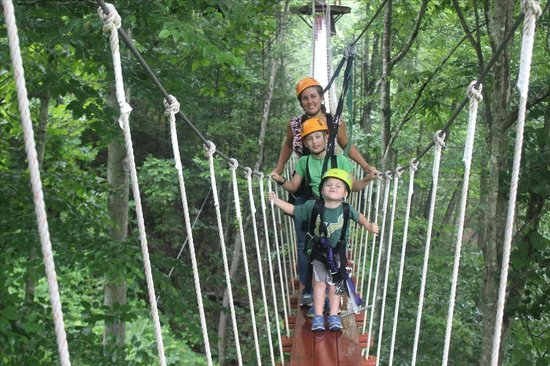 CLIMB Works - Smoky Mountains The canopy walk at the end of our adventure & The canopy walk at the end of our adventure - Picture of CLIMB ...