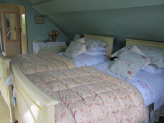 Duke House B&B: Gorgeous twin room