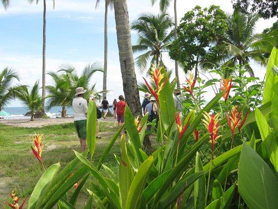 Hotel Costa Verde : Expedición turistica