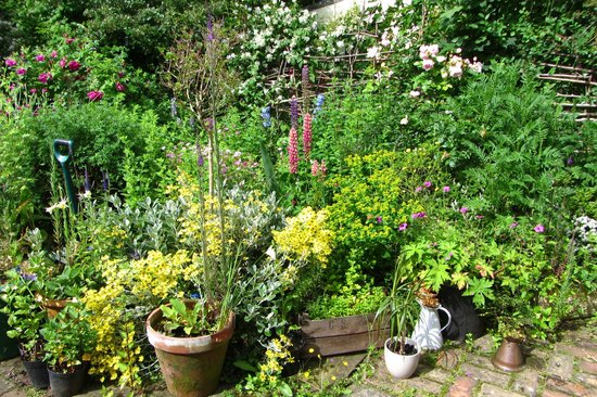 Holton, UK: Gorgeous gardens in June