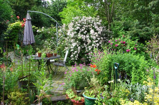 Holton, UK: The glorious gardens in June