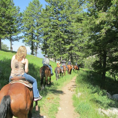 Jackson Hole Trail Rides: Riding on the trail