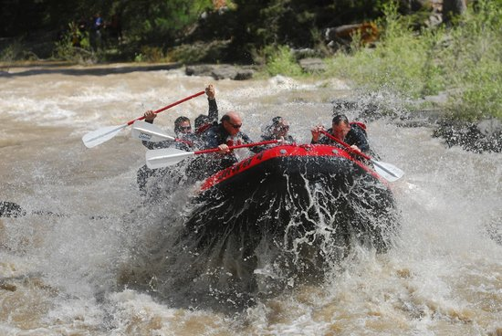 Jackson Hole Whitewater: Lunch Counter