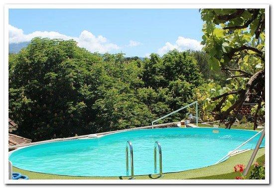 La Farnesine : vue de la piscine