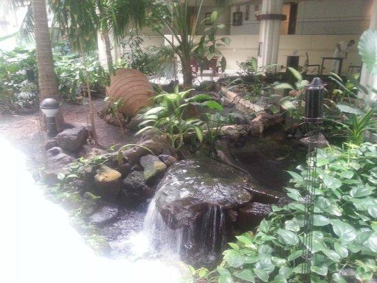 Melia Salinas - Adults recommended: jardines en el interior del hotel