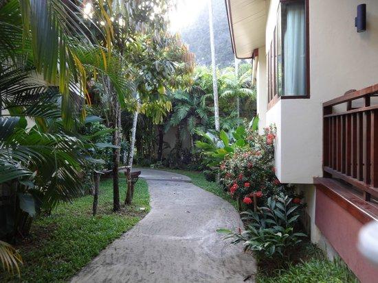 Aonang Phu Petra Resort, Krabi: Greenery inside