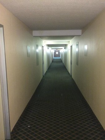 Quality Inn & Suites: Interior Corridor leading to the room. Old, tired and NASTY