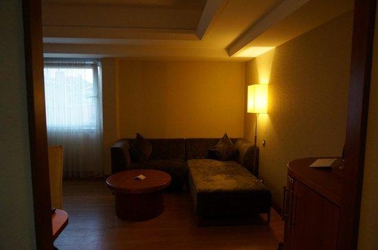 Holiday Inn Istanbul City: Room