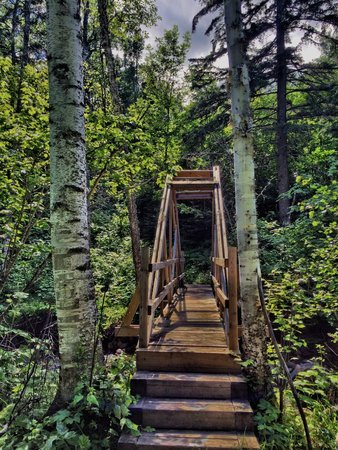 Superior Hiking Trail: Durfee Creek bridge - nice work SHTA!