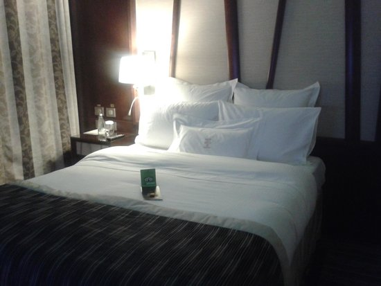 Hotel Metropolis: camera standard