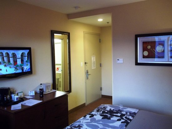 Sleep Inn - Long Island City: Room : clean and convenient
