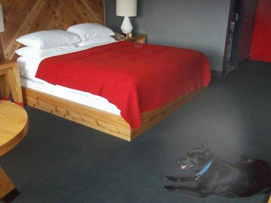 Lake House : inside room 20