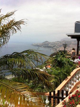 Ocean Gardens: View