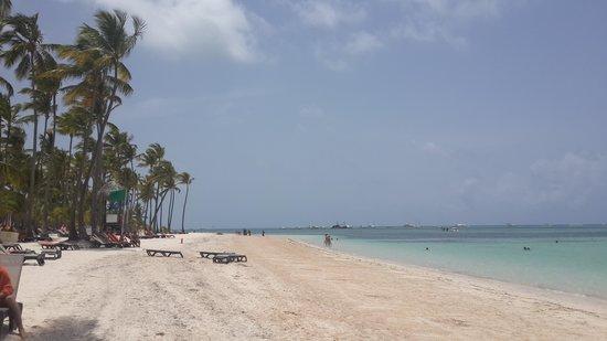 Barcelo Bavaro Beach - Adults Only: playa bavaro