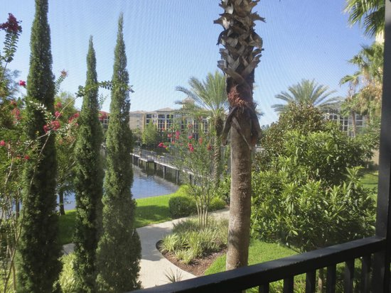 Hilton Grand Vacations at Tuscany Village: View from balcony