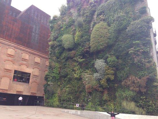 CaixaForum: jardim vertical