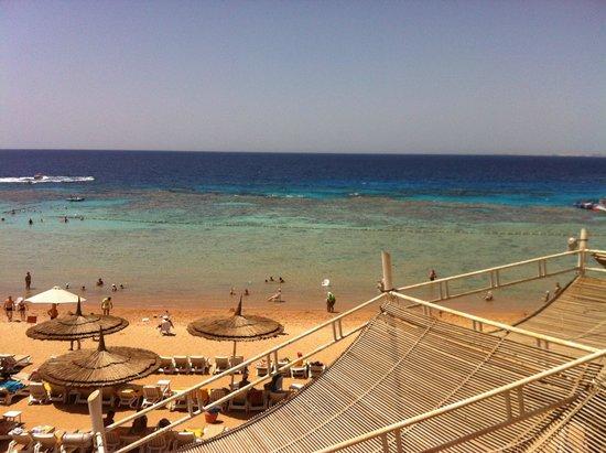 SENTIDO Reef Oasis Senses Resort : beech view