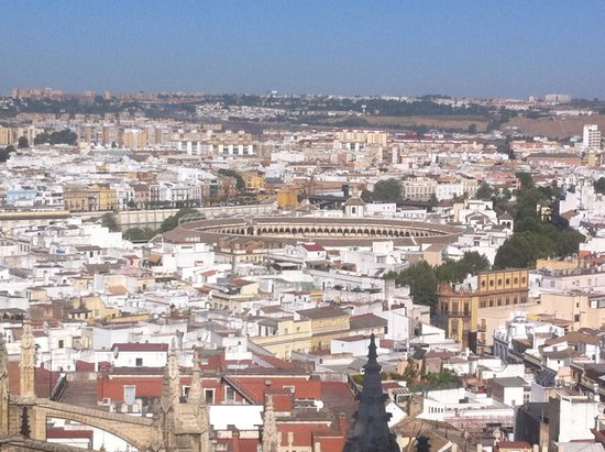 Catedral de Sevilla: A view from the top
