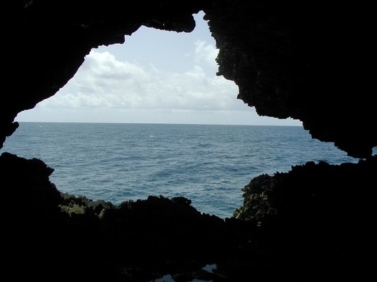 Animal Flower Cave : view from cave