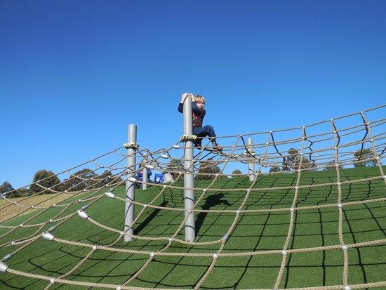 Sydney Olympic Park: Rope Climb