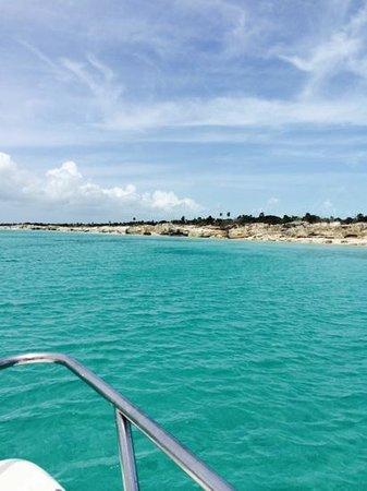 Big Blue Unlimited: near the shipwreck