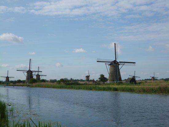 Red de molinos de Kinderdijk-Elshout: 風車群