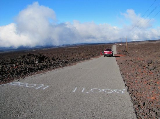 Mauna Loa Observatory: At the top.