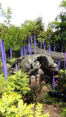 Chihuly Garden and Glass: Chihuly garden