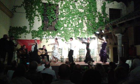 Tablao Flamenco Cardenal : En pleno show.