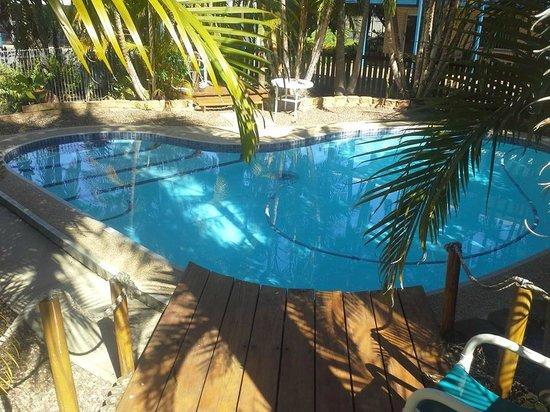 Tin Can Bay Motel : Sweet love heart shaped pool