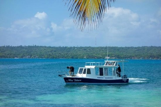 San Andres Unlimited (Miss Behave Glass Bottom Boats) : Miss Behave operando en Rose & Hynnes Cay