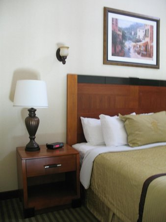 Monte Carlo Inn Barrie Suites: Above level, King size bed